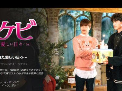 韓流ドラマ「トッケビの花嫁」をおすすめする根拠